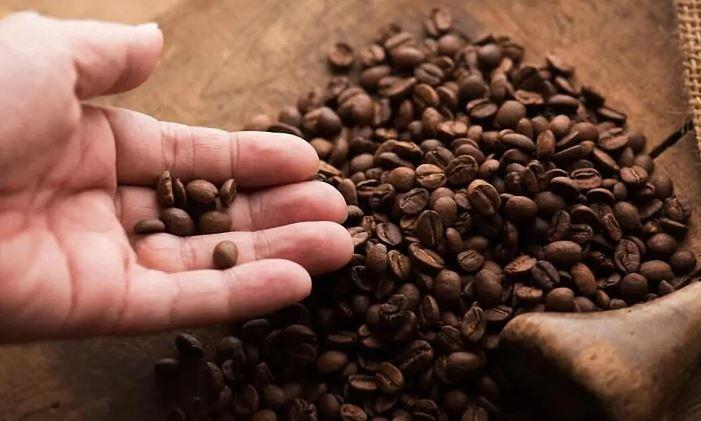 Какие кофейные зерна самые лучшие?